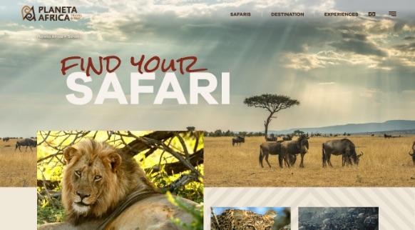 Criamos o site da Planeta Africa - África do Sul